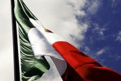 Bandierina messicana Fotografie Stock Libere da Diritti