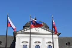 Bandierina slovacca Immagine Stock Libera da Diritti