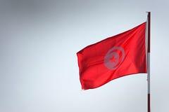Bandierina tunisina Immagini Stock Libere da Diritti