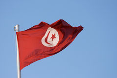Bandierina tunisina Fotografie Stock Libere da Diritti