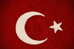 Bandierina turca Immagine Stock