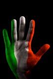 BANDIERINA VERNICIATA delle mani - verde, bianco e colore rosso dell'Italia Immagine Stock Libera da Diritti