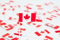 Bandierine canadesi Fotografia Stock Libera da Diritti