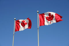 Bandierine canadesi Fotografia Stock