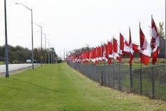 Bandierine canadesi Fotografie Stock