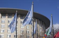 Bandierine dell'ONU a L'aia fotografie stock