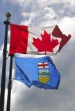 Bandierine di Alberta e del Canada Fotografia Stock Libera da Diritti