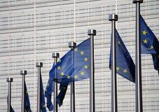 Bandierine di Unione Europea immagine stock libera da diritti