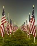 Bandierine nei campi curativi per 9/11 Fotografia Stock