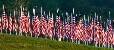 Bandierine nei campi curativi per 9/11 Immagini Stock