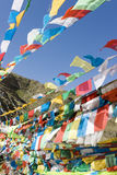 Bandierine tibetane di preghiera a Lhasa Immagini Stock Libere da Diritti