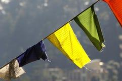 Bandierine tibetane variopinte Fotografie Stock