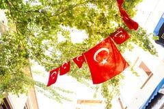 Bandierine turche Fotografie Stock Libere da Diritti