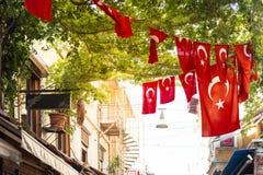 Bandierine turche Immagine Stock Libera da Diritti