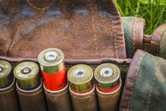 Bandolier with cartridges Stock Photography
