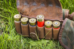 Bandolier with cartridges Stock Images
