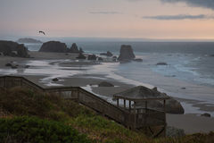 Bandon Beach Stock Images