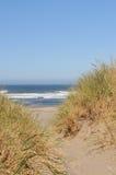 Bandon, dune dell'Oregon Fotografia Stock Libera da Diritti