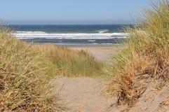 Bandon, dune dell'Oregon Fotografia Stock