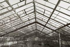 Bandoned växthus för Ð  Arkivbilder