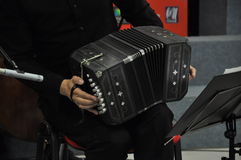 Bandoneon player. At a concert Stock Photos