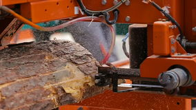 Bandsaw cut boards from pine. Close up stock footage