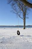 Bandschommeling in de winter Royalty-vrije Stock Afbeeldingen