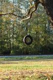 Bandschommeling het hangen van de boom naast de spoorweg stock foto's