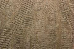 Bandsporen op een bruine landweg, geweven afdrukken stock afbeeldingen