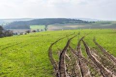 Bandsporen op een heuvel van Chilterns in de vroege Lente - 2 royalty-vrije stock foto