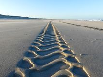 Bandsporen op vlot zandig verlaten strand stock foto