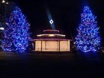 Bandstand Weihnachtsbäume lizenzfreies stockbild