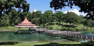 Bandstand and Zig-zag Bridge at MacRitchie Reservoir Royalty Free Stock Photos