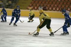 Bandy Royalty Free Stock Images