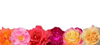 Baner av de ljusa färgerna som isoleras på vit bakgrund Royaltyfria Bilder