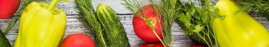Baner av den bästa sikten av nya grönsaker och kryddor Royaltyfria Bilder