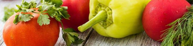 Baner av den bästa sikten av nya grönsaker och kryddor Royaltyfri Bild