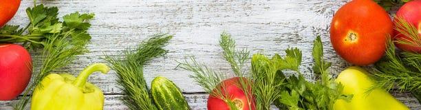 Baner av den bästa sikten av nya grönsaker och kryddor Arkivbild