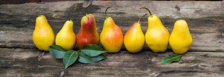 Baner av nya päron med sidor på den mörka lantliga trätabellen Fotografering för Bildbyråer
