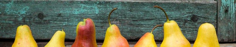 Baner av nya päron med sidor på den mörka lantliga trätabellen Arkivfoto