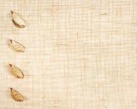 Baner de la harpillera con las hojas como decoración. Fotos de archivo