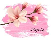 Baner för filial för rosa färgmålarfärgmagnolia Fotografering för Bildbyråer