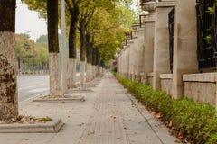 Baner för låg vinkel, lång trottoar Royaltyfri Fotografi