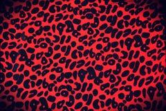 Baner för leopardtrycktappning Royaltyfri Bild