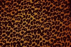 Baner för leopardtrycktappning Royaltyfria Foton