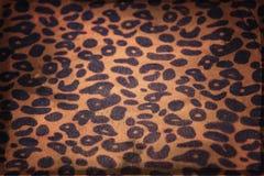 Baner för leopardtrycktappning Royaltyfri Fotografi