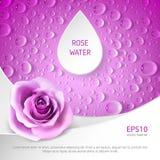 Baner f?r rosa watter vektor illustrationer