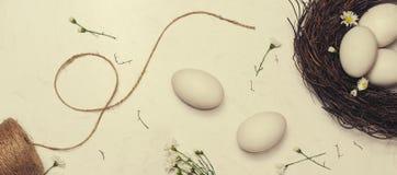 baner Fira påsk på våren Ett rede med östlig vit fem Royaltyfri Fotografi