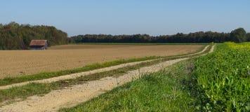 baner gräs- och jordlandskap i Weil, längs rutt kallade Romantiker Väg, Tyskland, panorama arkivbilder