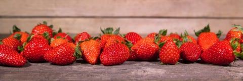 Baner massor av nya organiska jordgubbar Royaltyfri Fotografi